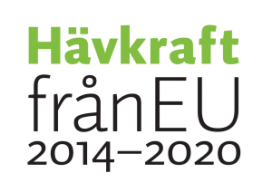 KivaQ-GoesGlobal-Hävkraft EU